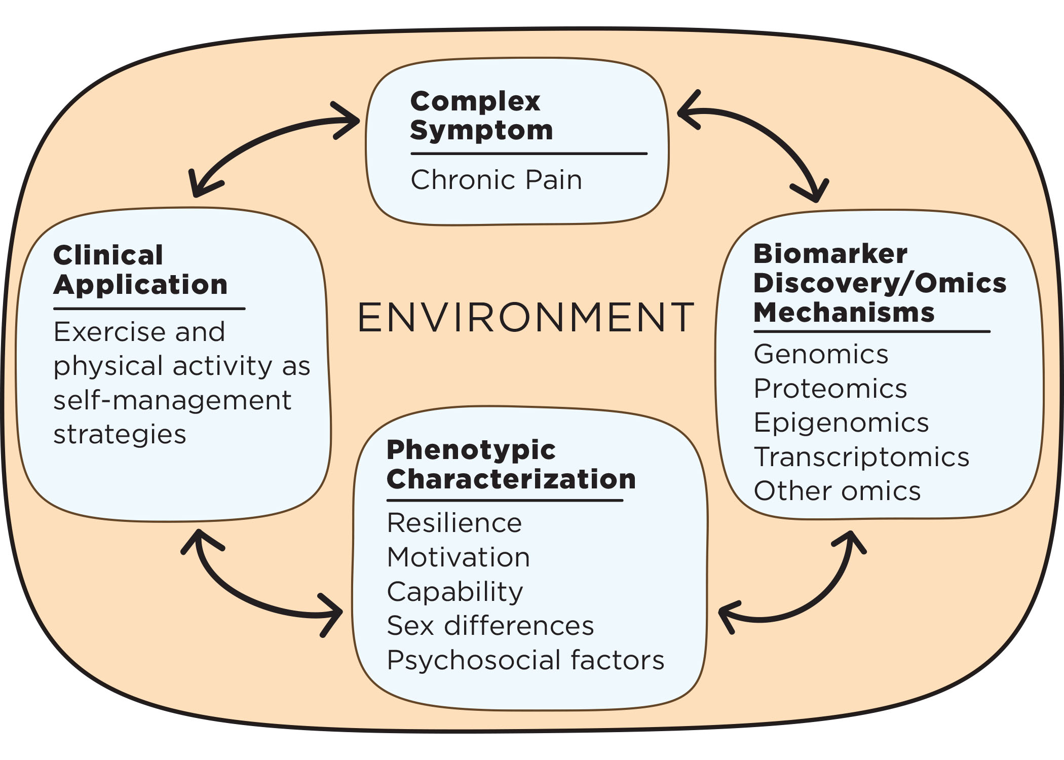 Chart with complex symptom (chronic pain), biomarker discovery/omics mechanisms (genomics, proteomics, epigenomics, transcriptomics, other omics), phenotypic characterization (resilience, motivation, capability, sex differences, psychosocial factors), and clinical application (exercise and physical activity as self-management strategies) in a loop